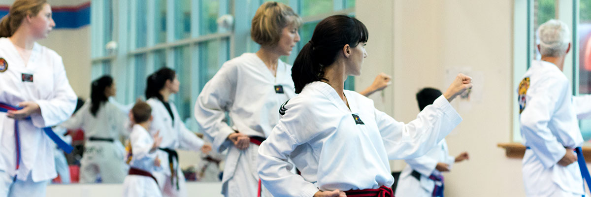 Adult Martial Arts banner image